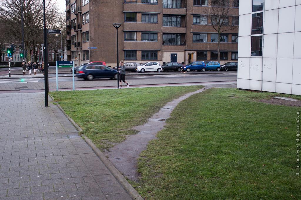 Тропинка в Роттердаме